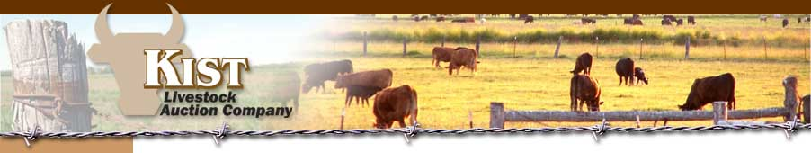 Kist Livestock Auction Company